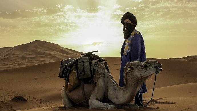 Sahara-merzouga-Morocco-Africa-camel-dromeda-1063039-wallhere.com