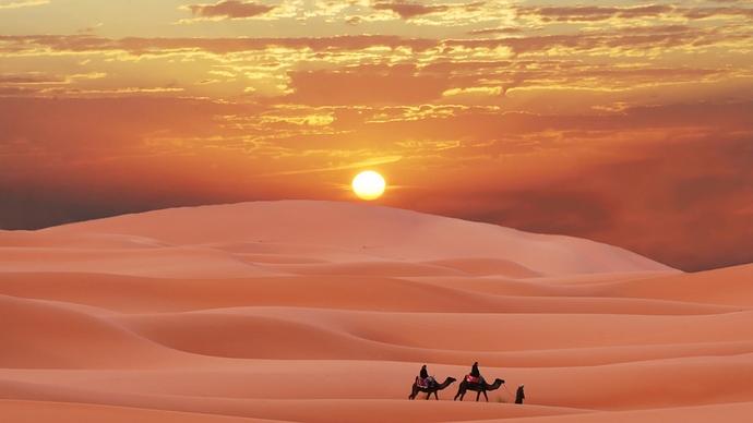 1920x1200-px-berber-camel-desert-Morocco-Sahara-1716639-wallhere.com
